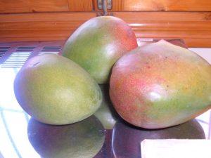 mangoesmar2011