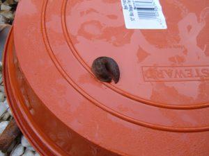 slug110112