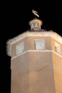Stork_Arboleas_Tower_28Aug2014_wm