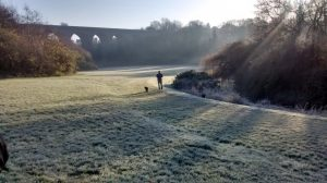 frosty-stourbridge