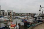 Dorset102015